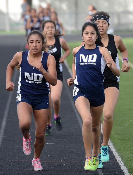 Palma vs NMC track