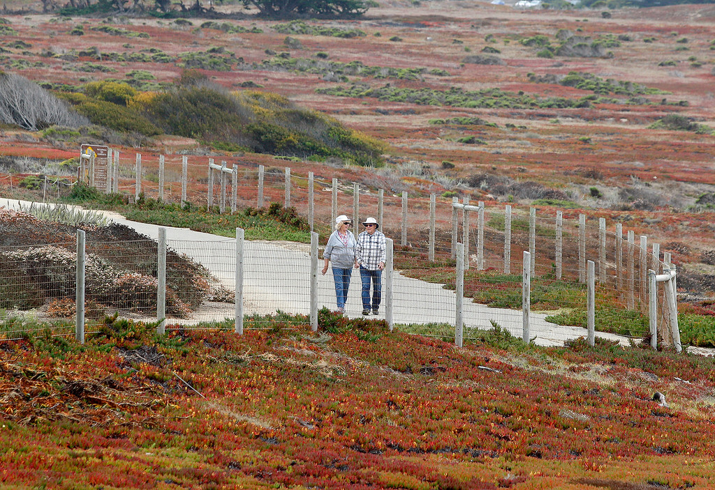 . A man and woman walk on the recreational trail at Fort Ord Dunes State Park on Monday, August 27, 2018.  (Vern Fisher - Monterey Herald)