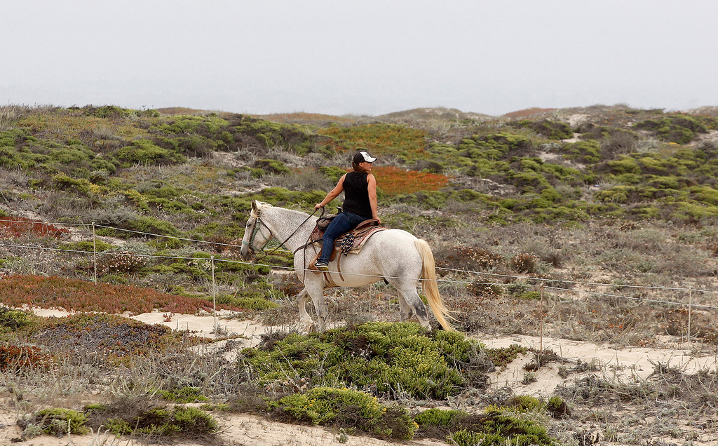 . Horseback riding at Salinas River State Beach south of Moss Landing on Monday, August 27, 2018.  (Vern Fisher - Monterey Herald)