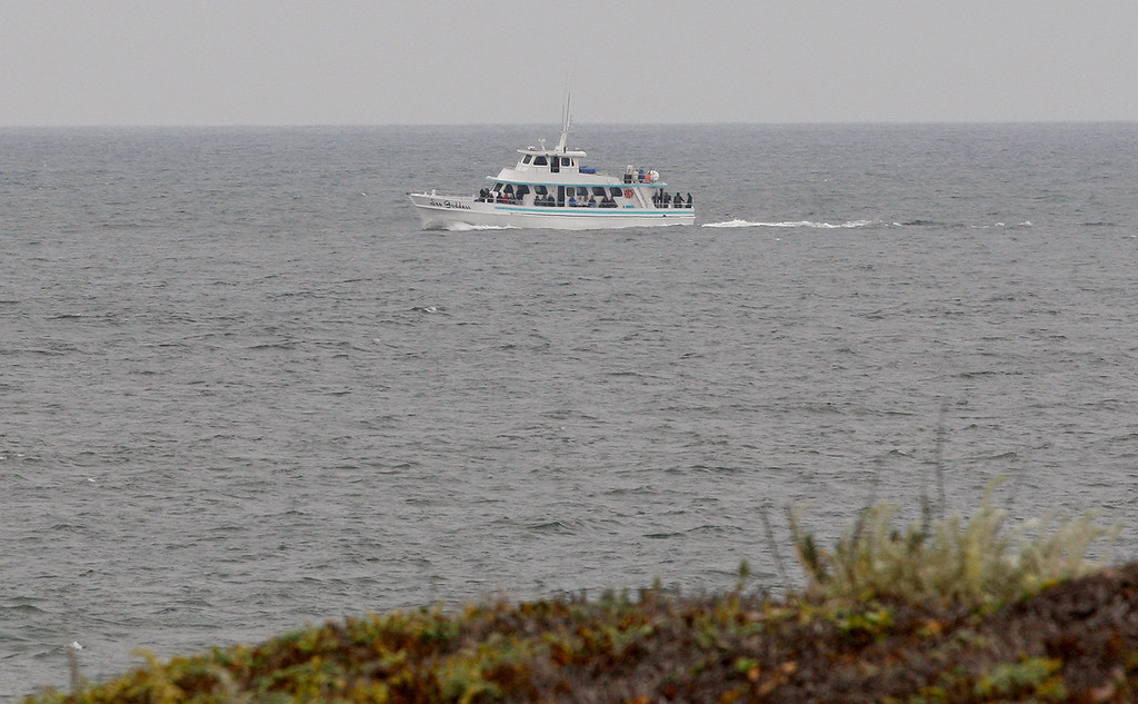 . The whale watching boat Sea Goddess off Salinas River State Beach south of Moss Landing on Monday, August 27, 2018.  (Vern Fisher - Monterey Herald)