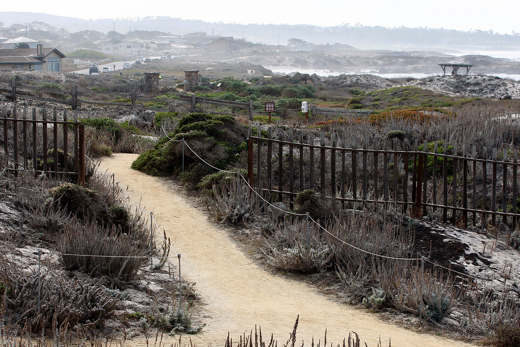 . Foot trail in Pacific Grove on Tuesday, Jan. 2, 2018.  (Vern Fisher - Monterey Herald)