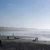Feature Asilomar Beach