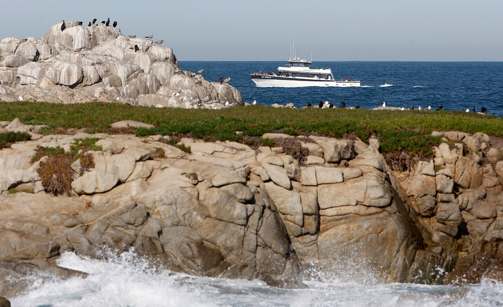 . The whale watching vessel Sea Wolf II heads out past Point Pinos in Pacific Grove on Thursday, Feb. 1, 2018.  (Vern Fisher - Monterey Herald)
