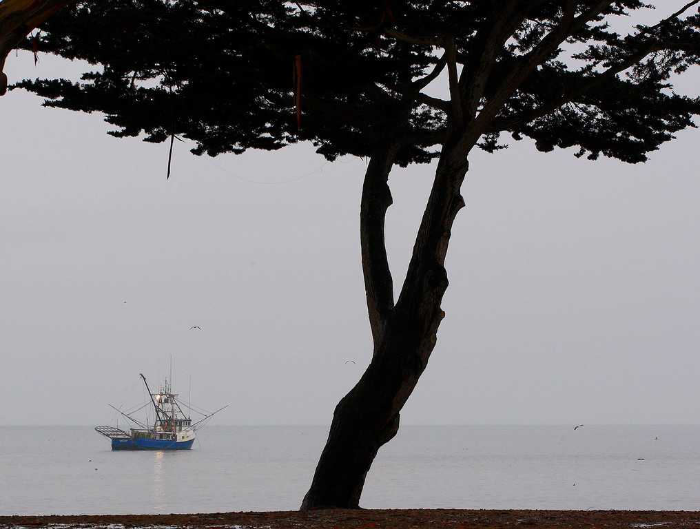 . A commercial fishing boat at anchor off the Monterey Harbor during a heavy rain shower on Monday, Jan. 8, 2018.  (Vern Fisher - Monterey Herald)