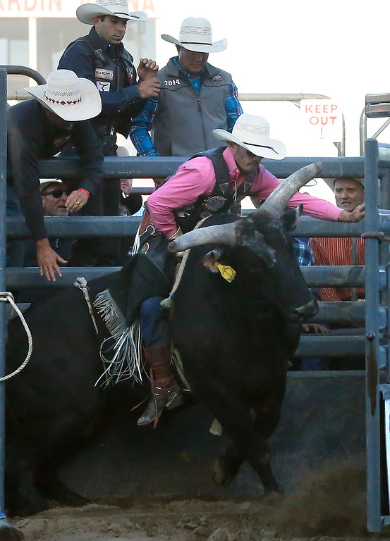 . Taylor Toves and his bull leave the chutes while competing in the Professional Bull Riding event at the Salinas Rodeo grounds on Wednesday July 19, 2017. (David Royal/Herald Correspondent)