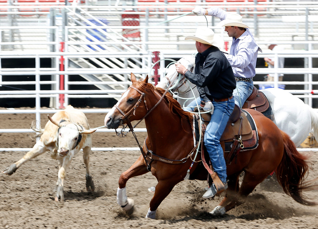 . Team ropers Dale Benevides and Buck McCay compete during the California Rodeo Salinas at the rodeo grounds in Salinas on Thursday July 20, 2017. (David Royal/Herald Correspondent)