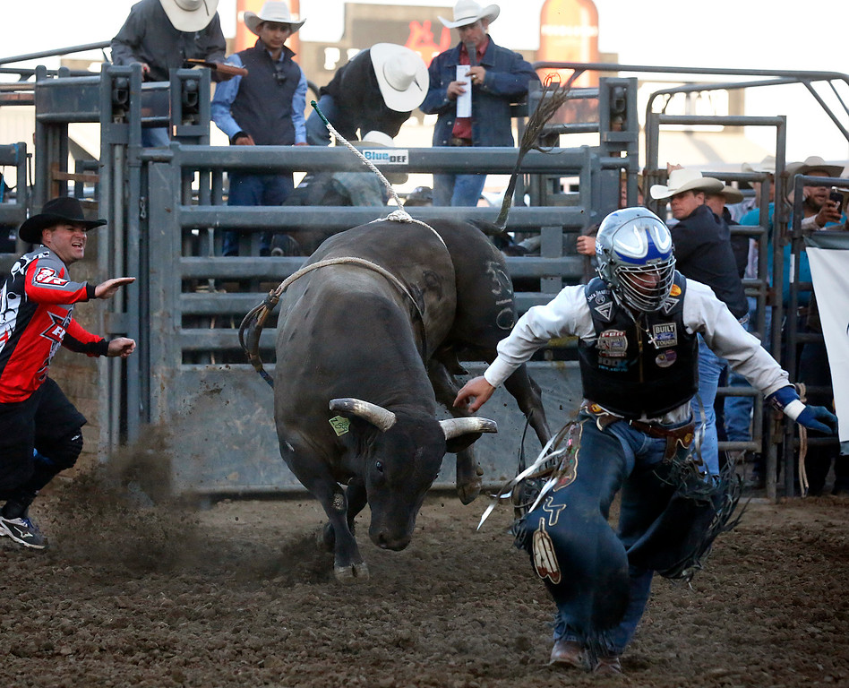 . Jesse Tillman runs away from his bull after getting tossed off  during the Professional Bull Riding event at the Salinas Rodeo grounds on Wednesday July 19, 2017. (David Royal/Herald Correspondent)