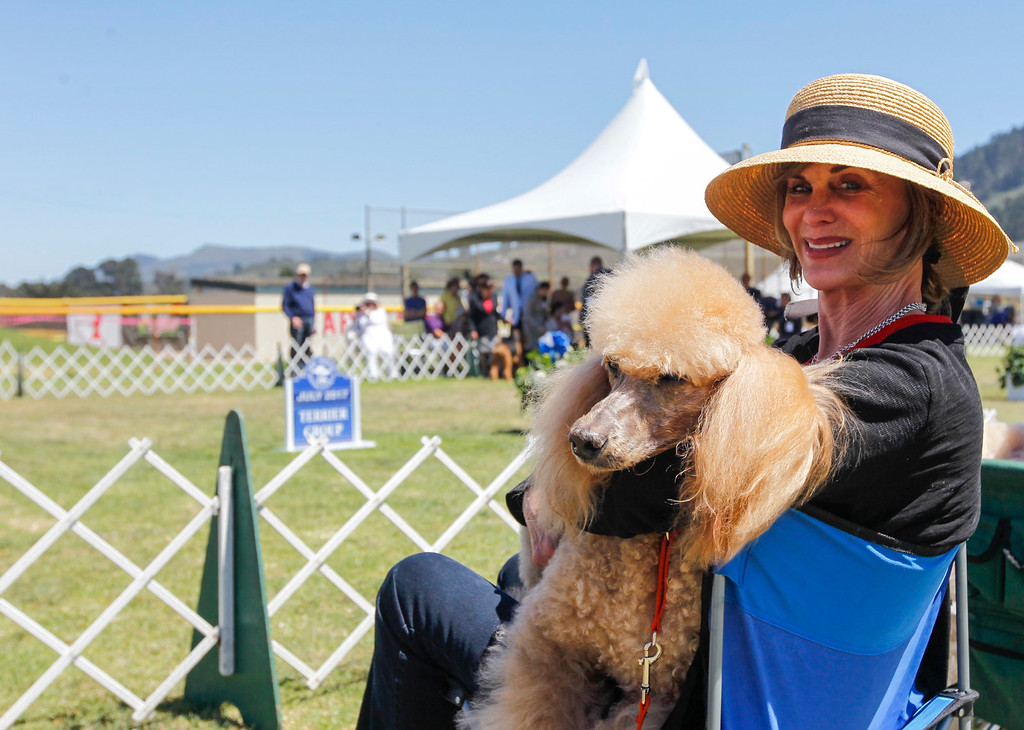. Ellen Wallace of Carmel Valley and her standard poodle, Ruby Tuesday are pictured during the 2017 Del Monte Kennel Club All Breed Shows and Obedience and Rally Trials at Carmel Middle School on Sunday, July 16, 2017 in Carmel, Calif. (Vernon McKnight/Herald Correspondent)