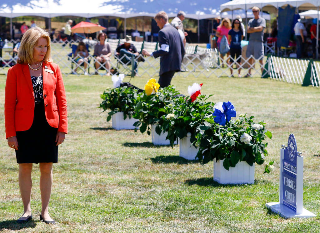 . Connie H. Clark judges the Best in Show Terrier Group during of the 2017 Del Monte Kennel Club All Breed Shows and Obedience and Rally Trials at Carmel Middle School on Sunday, July 16, 2017 in Carmel, Calif. (Vernon McKnight/Herald Correspondent)