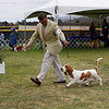 92nd annual Del Monte Kennel Club Dog Show