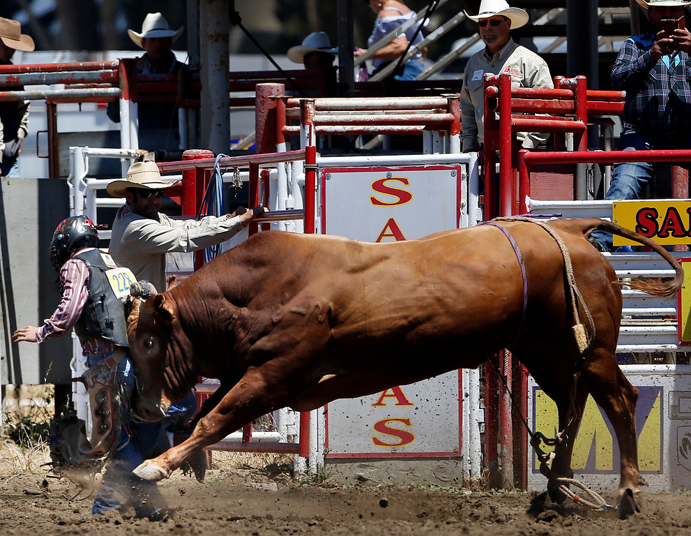 . Tom Henderson of Buna, TX gets plowed down by his bull while competing in the bull riding event during the California Rodeo Salinas at the rodeo grounds in Salinas on Saturday July 22, 2017. (David Royal/Herald Correspondent)
