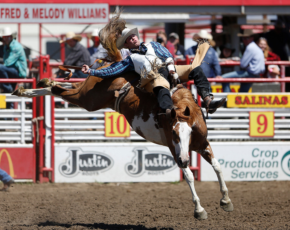 . Kenny Haworth of Orofino, ID competes in the bareback event during the California Rodeo Salinas at the rodeo grounds in Salinas on Saturday July 22, 2017. (David Royal/Herald Correspondent)