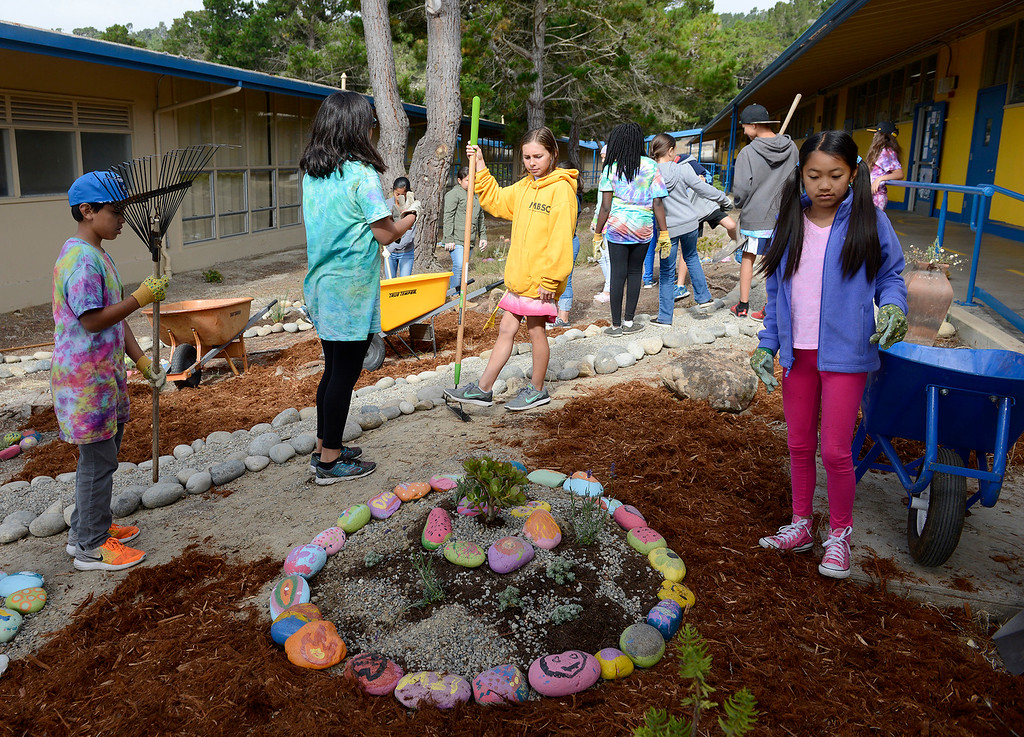 . Current and incoming students at Colton Middle School in Monterey have been sprucing up the campus on Friday, July 21, 2017 to have it ready for the new school year.  (Vern Fisher - Monterey Herald)