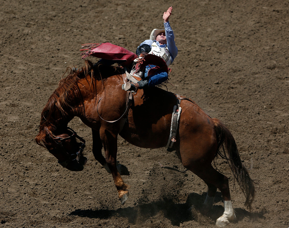 . Bill Tutor bareback rides during the finals of the California Rodeo Salinas at the rodeo grounds in Salinas on Sunday July 23, 2017. (David Royal/Herald Correspondent)