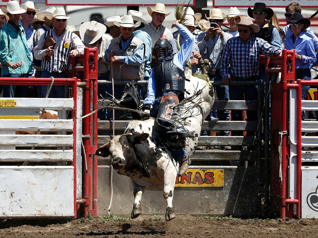 . Nic Lica of Garden City, MI hangs on to score an 85 while competing in the bull riding event during the California Rodeo Salinas at the rodeo grounds in Salinas on Saturday July 22, 2017. (David Royal/Herald Correspondent)