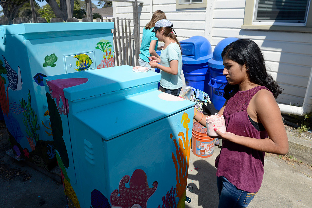 . Ira Shirdhankar, 15, with the Creative Painters Group with their finished utility boxes they painted in Monterey on Aug. 1, 2017.  (Vern Fisher - Monterey Herald)