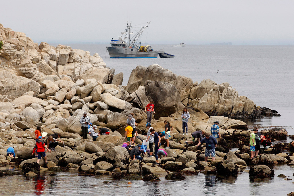 . People walk on the rocks at Lovers Point Park in Pacific Grove on Monday, July 31, 2017.  (Vern Fisher - Monterey Herald)