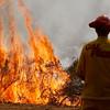 Soberanes Fire