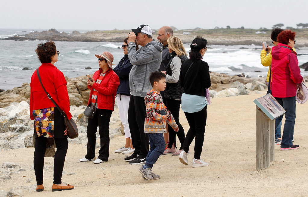 . Tourists take in the view at Bird Rock on 17-Mile Drive in Pebble Beach on Wednesday, June 28, 2017.  (Vern Fisher - Monterey Herald)