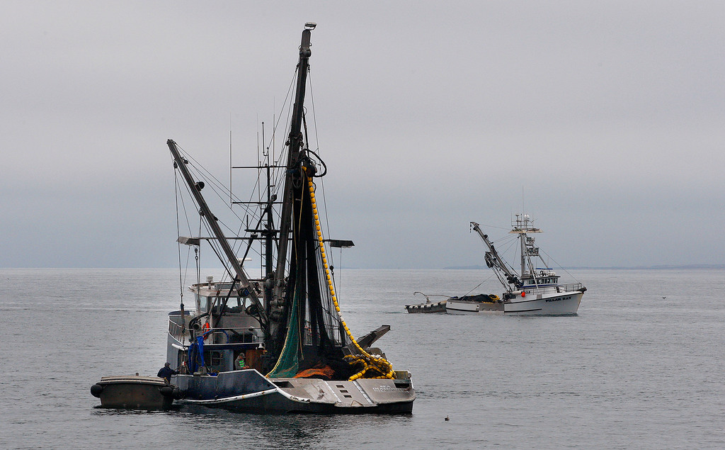 . Commercial fishing boats off Del Monte State Beach in Monterey on Thursday, July 5, 2018.  (Vern Fisher - Monterey Herald)