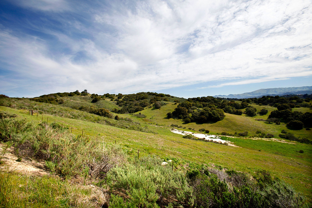 . Laguna Seca Recreation Area on Wednesday, March 15, 2017.  (Vern Fisher - Monterey Herald)