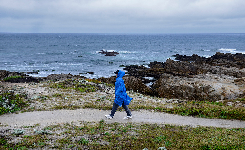. A woman walks in the rain on a trail in Pacific Grove near Point Pinos on Thursday, March 22, 2018.  (Vern Fisher - Monterey Herald)