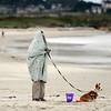 Weather Asilomar Beach Pacific Grove