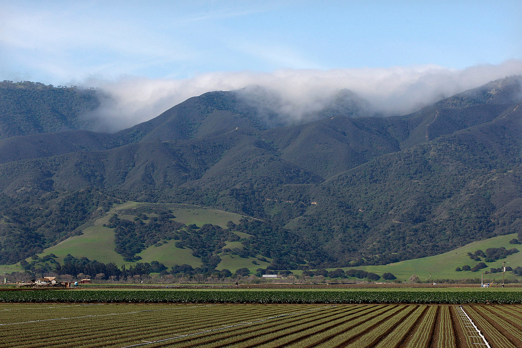 . Fog rolls over the Santa Lucia Mountains near Chualar on Monday, April 2, 2018.  (Vern Fisher - Monterey Herald)