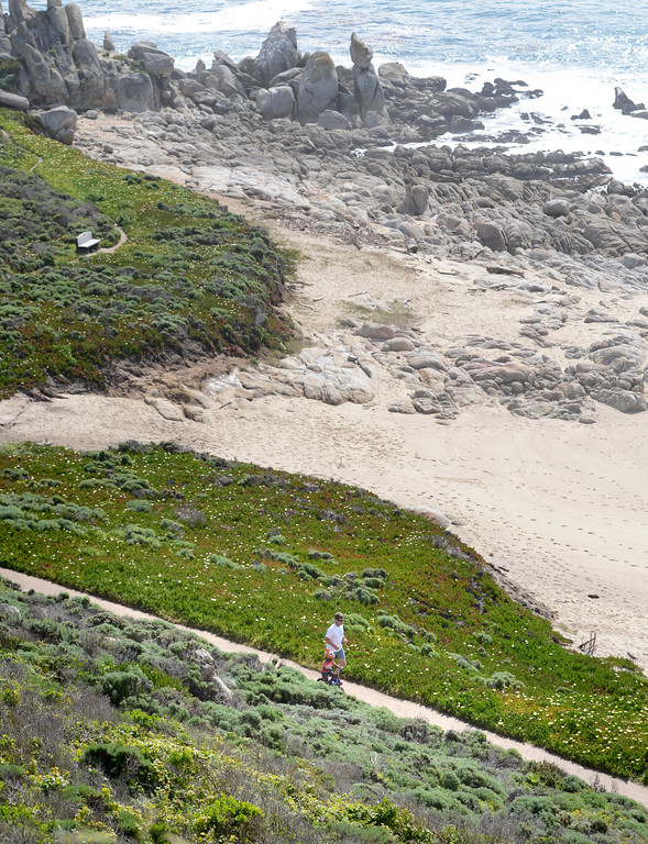 . A man runs beside a child on a bicycle on a trail in Carmel Meadows on as Point Lobos loom sin the background on Tuesday April 4, 2017. (David Royal - Monterey Herald)