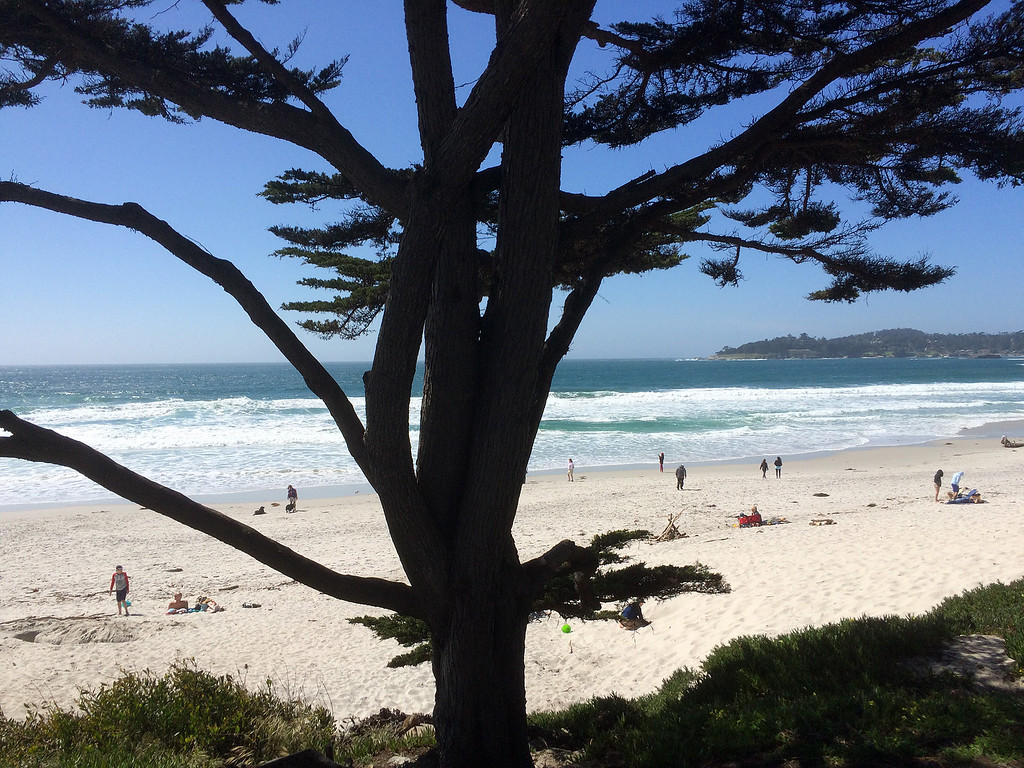. Sunshine brought beach goers to Carmel Beach in Carmel on Monday April 3, 2017. (David Royal - Monterey Herald)