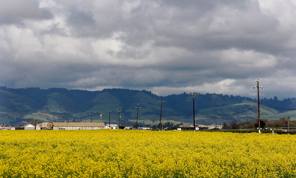 . Clearing rain showers in north Monterey County on Wednesday, March 14, 2018.  (Vern Fisher - Monterey Herald)
