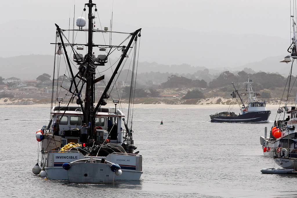 . Commercial fishing boats coming and going at the Breakwater Cove Marina in Monterey on Thursday, May 10, 2018.  (Vern Fisher - Monterey Herald)