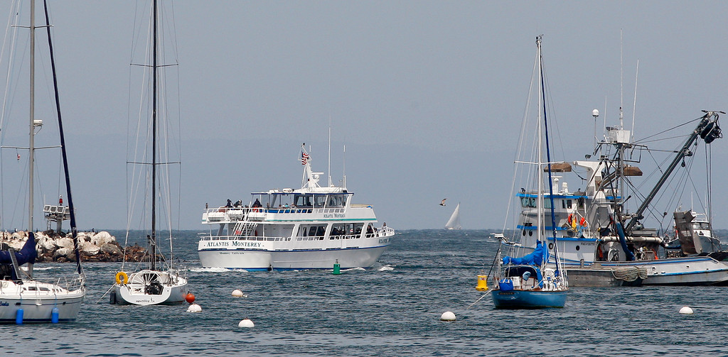 . A whale watching boat heads out from the Monterey Harbor on Friday, May 4, 2018.  (Vern Fisher - Monterey Herald)