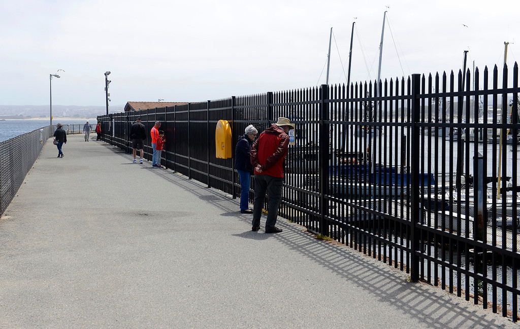 . People walk on the U.S. Coast Guard Pier in Monterey on Thursday, May 10, 2018.  (Vern Fisher - Monterey Herald)