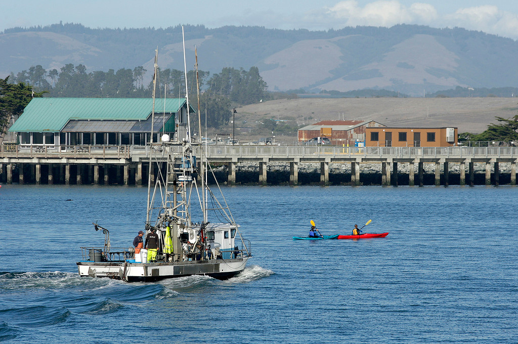. A commercial fishing boat enters the Moss Landing Harbor on Tuesday, Nov. 14, 2017.  (Vern Fisher - Monterey Herald)