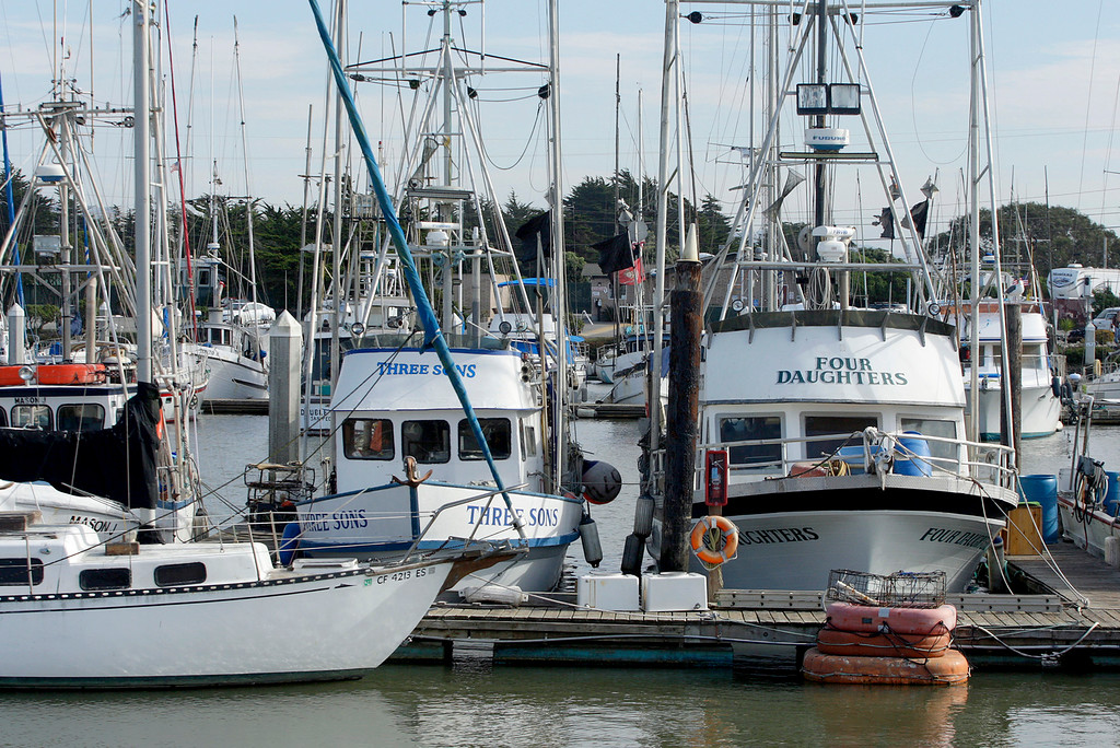 . Commercial fishing boats at dock in Moss Landing on Wednesday, Nov. 15, 2017.  (Vern Fisher - Monterey Herald)