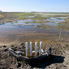 Castroville Slough Wetland Restoration and Water Quality Treatment System