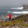 Asilomar Coast Trail Restoration Project