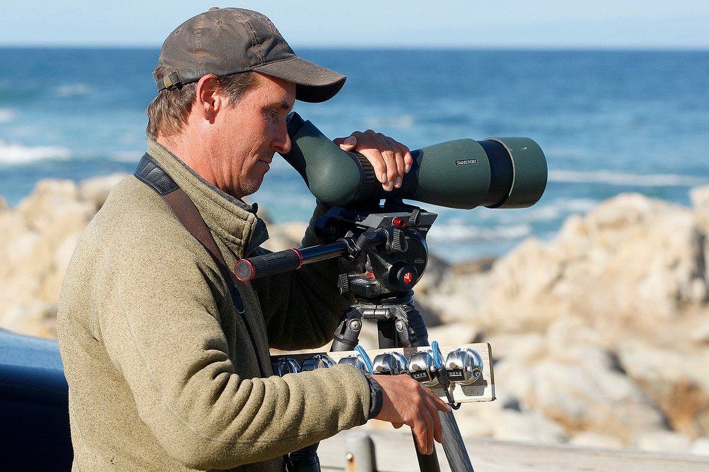 . Karl Bardon a field ornithologist from Minnesota uses a high powered scope and a variety of four digit tally counters to view and count migrating birds at Point Pinos in Pacific Grove on Wednesday, Nov. 29, 2017.   (Vern Fisher - Monterey Herald)