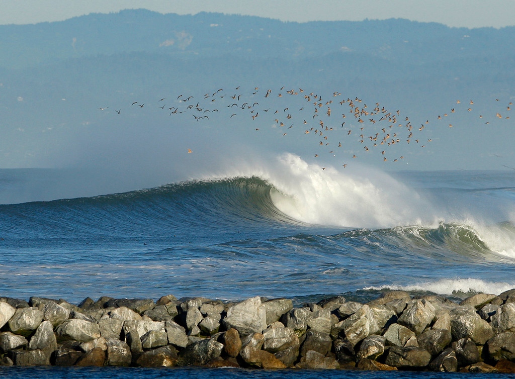 . A flock of birds soar over a breaking wave at Moss Landing State Beach on Thursday, Nov. 30, 2017.  (Vern Fisher - Monterey Herald)