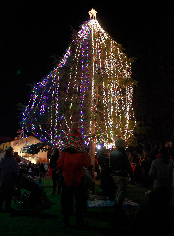 . Pacific Grove held its Christmas Tree lighting ceremony at Jewell Street Park in Pacific Grove on Monday, Nov. 28, 2016.  (Vern Fisher - Monterey Herald)
