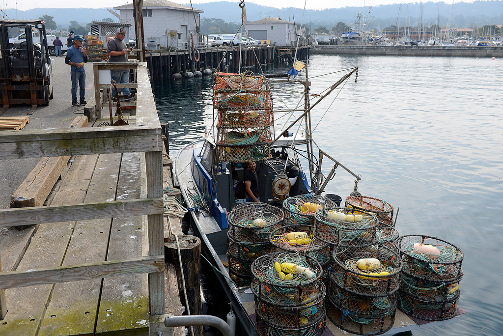 . The commercial fishing boat Gabbiano loads crab pots at Wharf No. 2 in Monterey on Tuesday, November 13, 2018.  The commercial crab fishing season begins on November 15.  (Vern Fisher - Monterey Herald)