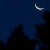Moon over Venus