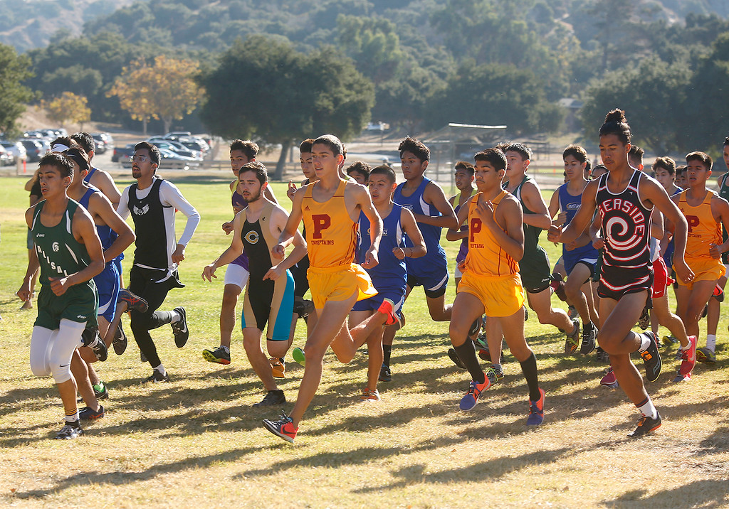 . Palma\'s Sam Lavorato, center, in yellow, starts with other runners on his way to winning the MBL boys cross country finals at Toro Park in rural Salinas on Saturday October 28, 2017. Lavorato finished the race in 15:59 to complete an undefeated Gabilian Division season. (David Royal/Herald Correspondent)