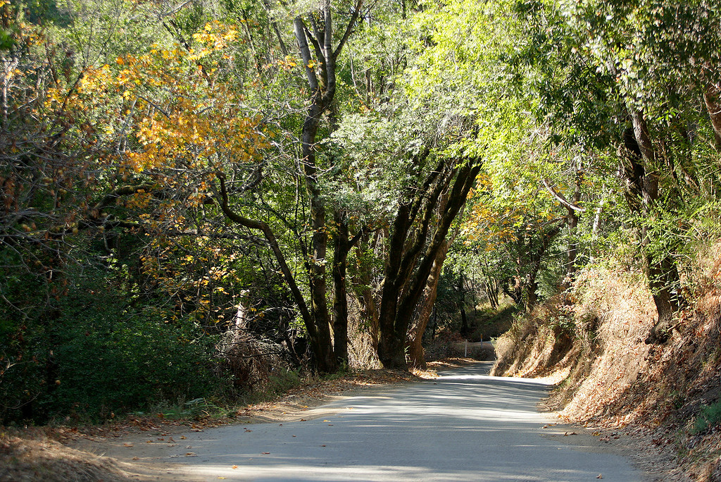 . Sycamore Canyon Road on the way to Pfeiffer Beach in Big Sur on Wednesday, Nov. 1, 2017.  (Vern Fisher - Monterey Herald)