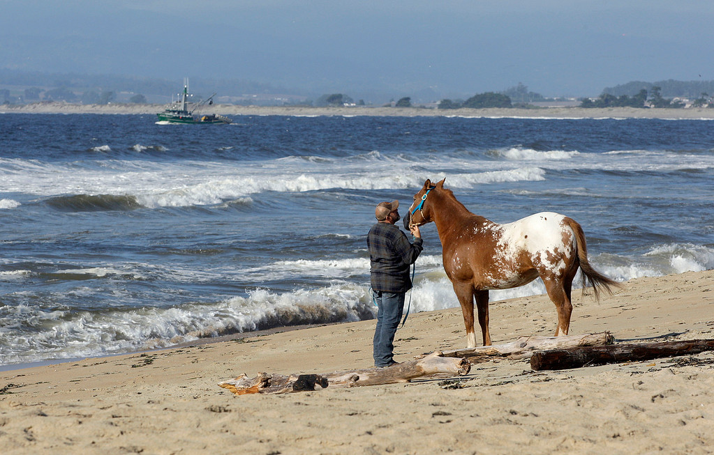 . A commercial purse seiner heads out of the Moss Landing Harbor while a man and his horse walk on Salinas River State Beach south of Moss Landing on Monday, Oct. 30, 2017.  (Vern Fisher - Monterey Herald)