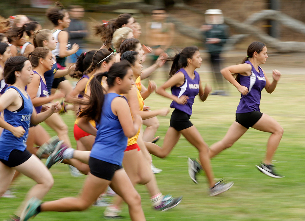 . The start of the girls varsity MTAL cross country finals at Toro Park on Thursday, Nov. 2, 2017.  (Vern Fisher - Monterey Herald)