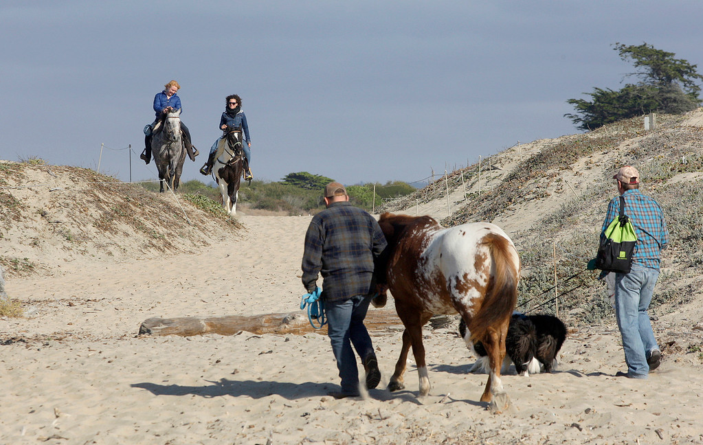 . Horseback riders took advantage of the nice weather on Salinas River State Beach south of Moss Landing on Monday, Oct. 30, 2017.  (Vern Fisher - Monterey Herald)