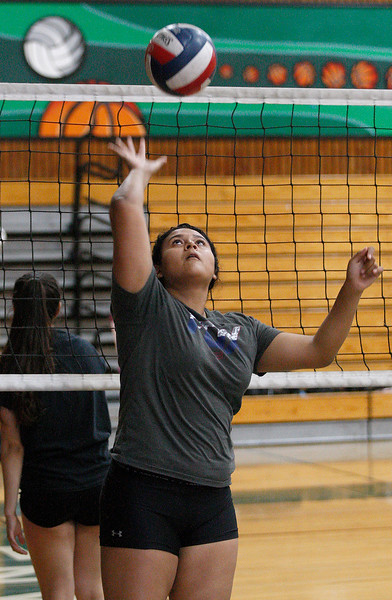 Alisal Girls Volleyball