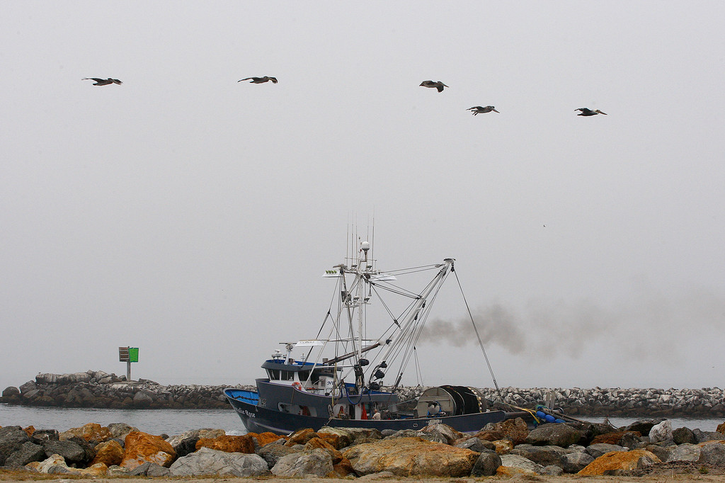 . The commercial fishing boat Natalie Rose heads out from the Moss Landing Harbor on Wednesday, September 26, 2018.  (Vern Fisher - Monterey Herald)